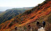 北海道・大雪山系、秋色に染まる