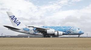 ウミガメが描かれた全日空のエアバスA380=3月、成田空港