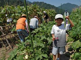 農作業や紙漉き体験など農村生活を満喫!