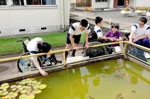 ビオトープの生き物を観察する福井県立福井特別支援学校の生徒ら=2017年9月、福井市の同校