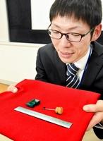 自ら発見した真三錐歯類の化石を見つめる酒井佑輔さん=2月4日、福井県勝山市の県立恐竜博物館