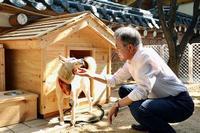 金正恩氏が贈った犬、6匹出産