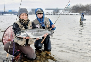 解禁初日に釣り上げたサクラマスを手に笑顔を見せる釣り人=1日、福井市上野本町の九頭竜川