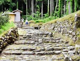 日本遺産に認定された白山平泉寺の石畳道=5月20日、福井県勝山市平泉寺町平泉寺