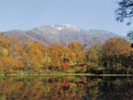 刈込池散策は秋のイチオシアウトドア!