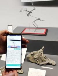 福井県立恐竜博物館、DX推進サービス向上 アプリ使いスマホに解説文字