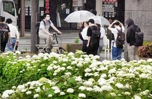 福井県福井市大手2丁目=6月11日午前9時7分