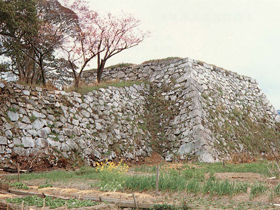 京極高次が着工し、酒井忠勝が完成させた城