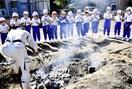 焼き芋 皮ごとペロリ 越前町 児童ら収穫「うま…