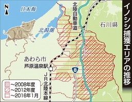 福井県あわら市のイノシシ捕獲地域の推移