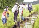 水辺の生きものみっけ! 敦賀・中池見湿地 児童…