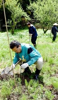 国産漆需要増 休耕畑に植樹 越前市の箕輪漆行