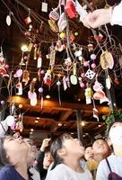 繭や縁起物などを飾り付け、喜ぶ園児=1月14日、福井県勝山市のはたや記念館ゆめおーれ勝山
