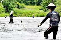 九頭竜川などでアユ釣り解禁
