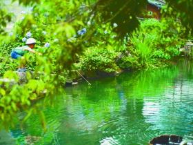 市民パワーの結集で憩いの池復活!