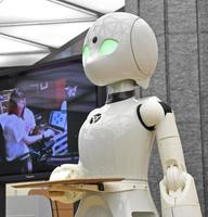 重度障害者による遠隔操作で給仕する分身ロボット「OriHime―D」=8月、東京都港区