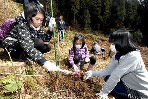ウルシの苗木を植える参加者=21日、福井県鯖江市