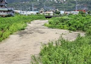 台風5号の影響で増水し濁流が流れる木の芽川=8日、福井県敦賀市