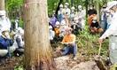 伐採せずに木を乾燥 福井で研修 考案者が手法紹…