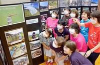 6年の成果 写真で 赤トンボ研究 勝山・村岡の女性団体 11日から100枚展示 「身近な恵み、再確認を」