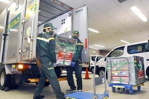 医療従事者ら用に福井県内に届いた新型コロナウイルス感染症ワクチン=3月5日、福井県立病院