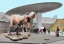恐竜博物館に映画の巨大ティラノ
