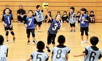 「デモスポ」始まる 敦賀 ドッジボール 美浜 エルゴ 10月まで県内各地 児童らが汗