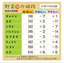 野菜のお値段 6月17日の週
