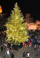 草津温泉街にクリスマスツリー