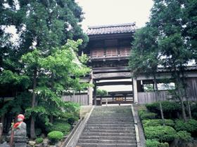 鯖江藩主の菩提寺 「風神」「龍神」「雷神」の天井墨絵が有名