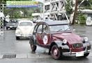 勝山から東尋坊へ、往年の名車集結