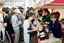 福井の地酒 飲み比べ 26酒蔵一堂 フェスに8…
