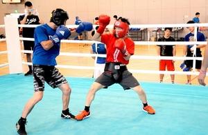 ボクシングの成年、少年の選手が集まり汗を流した合同合宿=8月12日、羽水高