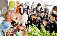 恐竜五月人形「怖くてかっこいい」 福井県立恐竜博物館、5月末まで展示