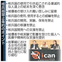 【ニュース早分かり】核兵器 非合法化の初条約 保有国には効力なく