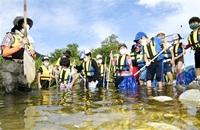 網でガサガサ 魚捕まえたよ 大野で自然体験教室