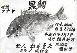 松本さんのチヌ魚拓