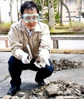 高確率で化石が出るという福井県大野市和泉地区の岩石