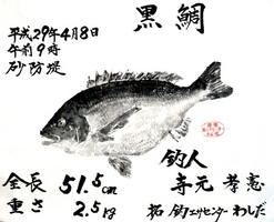 寺元さんのチヌ魚拓