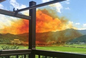 爆発し薬品とみられるオレンジ色の煙が広がる工場=7月2日、福井県若狭町(提供写真)