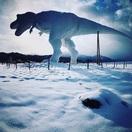 冬の勝山市に「白い恐竜」現る