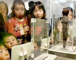 初公開された日本最古のヨロイ竜の歯化石(手前)と10倍に拡大した模型などが並ぶ企画展=17日、福井県勝山市の福井県立恐竜博物館