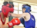 【写真特集】高校ボクシング