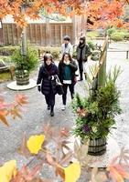 紅葉で色づく境内に一足早く設置された門松=23日、福井市田ノ谷町の大安禅寺