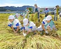 献上米 児童ら刈り取り 上文殊地区 180キロ、東大寺へ みんなで読もう