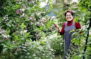 鯖江の「花園」今年も色鮮…