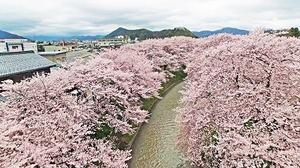 福井県越前市の吉野瀬川=12日、同市上太田町上空から同川上流に向かって日本空撮・小型無人機ドローンで撮影