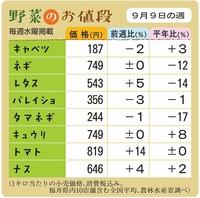 野菜のお値段 9月9日の週