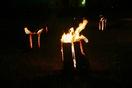 美山の森林守る「幻灯祭」開催へ