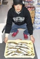 中村さん(福井市)がサッカー場下で釣ったアジ
